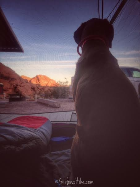 Camping at Valley of Fire State Park, Nevada State Parks