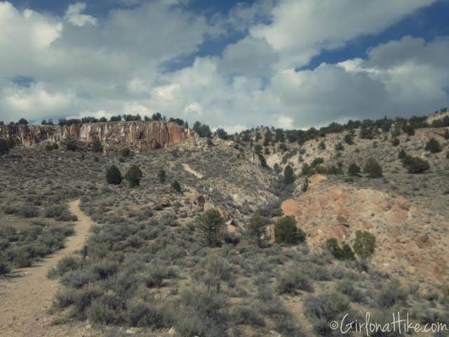 Fremont Indian State Park, Utah Pinyon Tree, Utah Juniper Tree