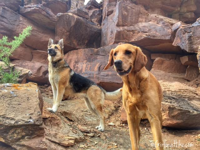 Nine Mile Canyon, Utah trail guide