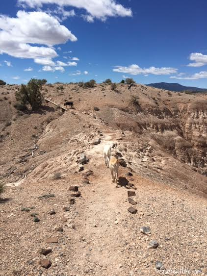 Hiking and Camping at Cathedral Gorge State Park, Eagle Point Overlook