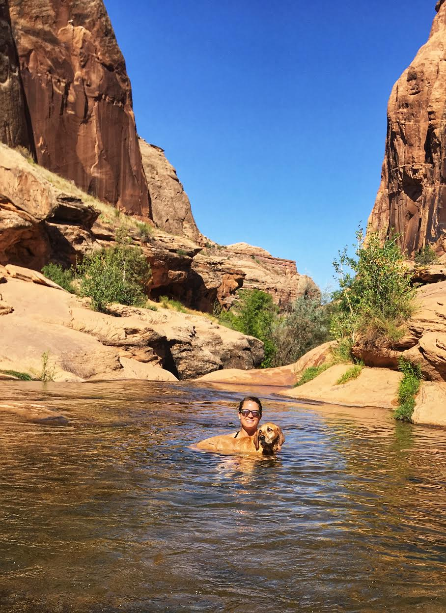 Hiking the North Fork of Mill Creek, Moab, Hiking with Dogs in Moab, Utah