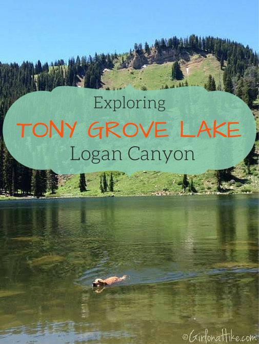 Tony Grove Lake, Utah, Hiking in Utah with Dogs