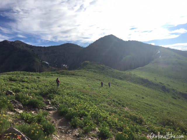 Hiking Santaquin Peak, Wasatch Peak Baggers