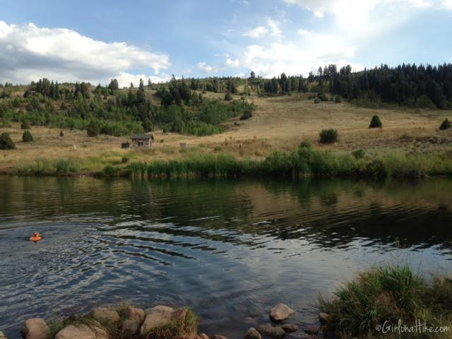 Gorgoza Dog Park, Kimball Junction, Utah, Hiking in Utah with Dogs