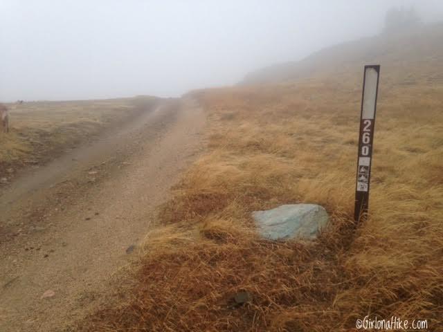 Hiking to Thurston Peak, Farmington, Utah, Utah County High Point