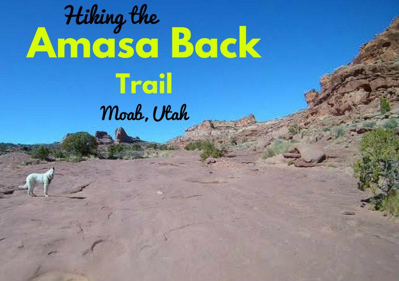 Hiking the Amasa Back Trail, Moab, Utah, Hiking in Utah with Dogs, Hiking in Moab with Dogs