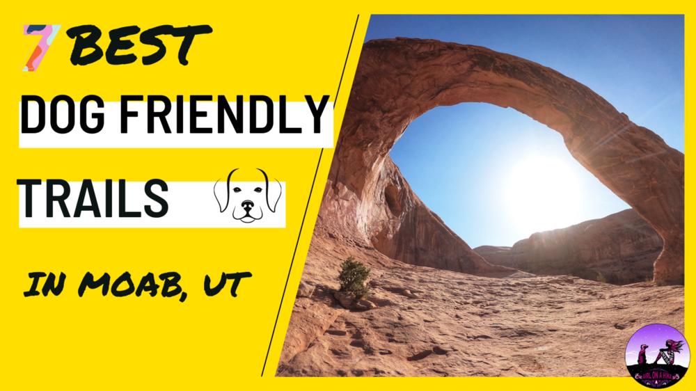 Best Dog Friendly Trails in Moab, Utah