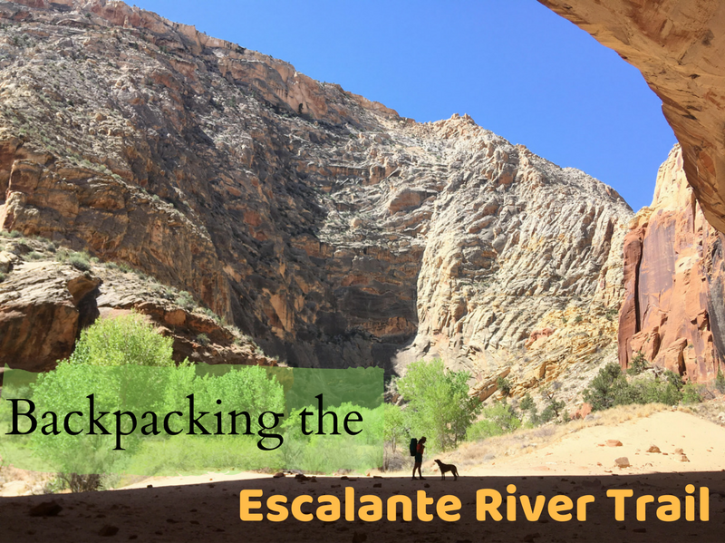 Backpacking the Escalante River Trail, Grand Staircase Escalante National Monument