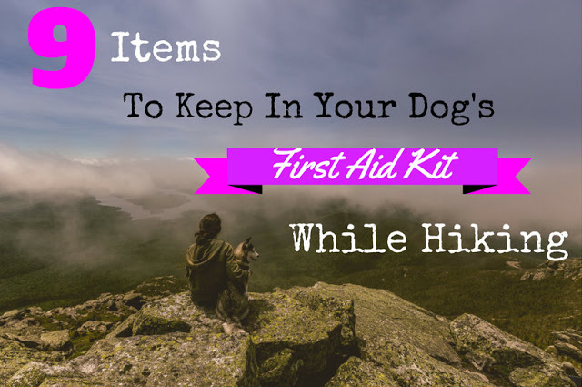 How to Get your Dog Ready for Their First Backpacking Trip! 9 Items to Keep in Your Dog's First Aid Kit