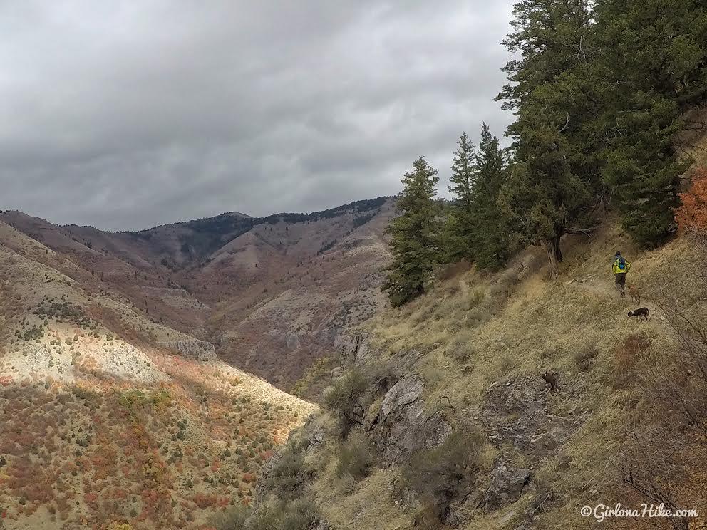 Hiking the Crimson Wall Trail, Logan Canyon