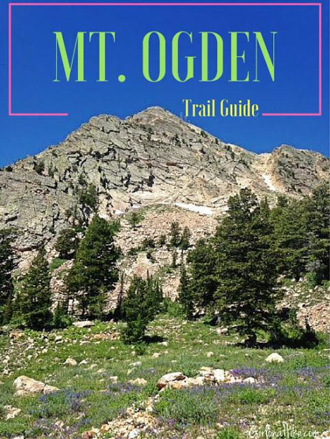 Hiking to Mt. Ogden, Snowbasin