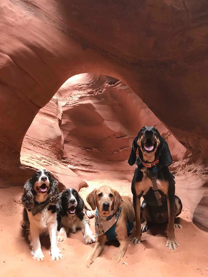 Hiking Spooky & Peekaboo Slot Canyons (Loop), Hiking in Escalante, Utah, Hiking in Escalante with Dogs, Hiking slot canyons