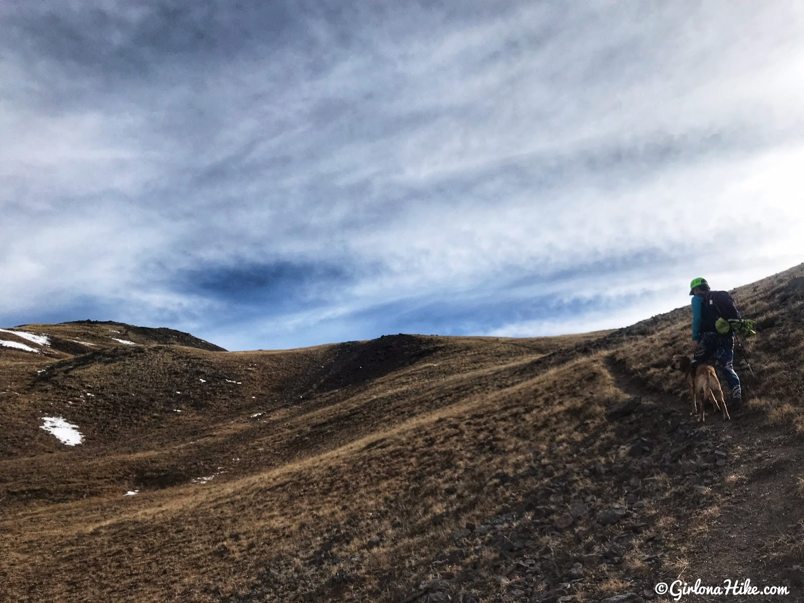 Hiking to Delano Peak, Tushar Mountains, Beaver & Piute County High Point, Hiking in Utah with Dogs