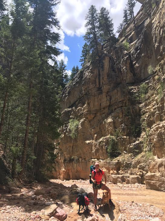 Backpacking the Ashdown Gorge via Rattlesnake Creek