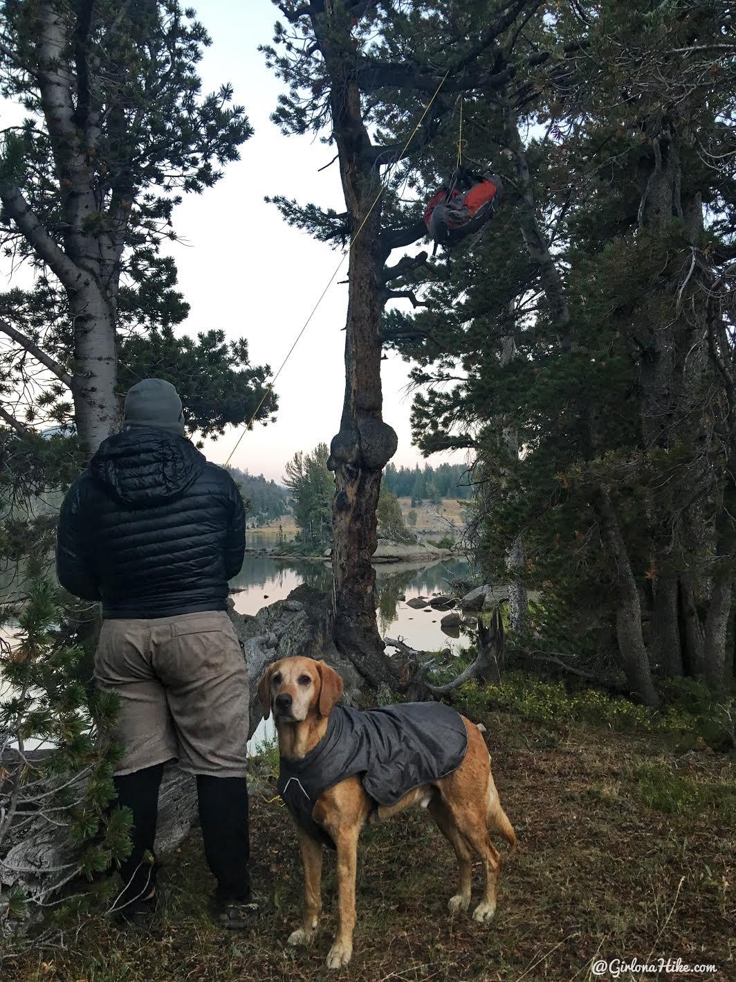 Backpacking to Mt. Hooker & Baptiste Lake, Wind River Range, Dad's Lake