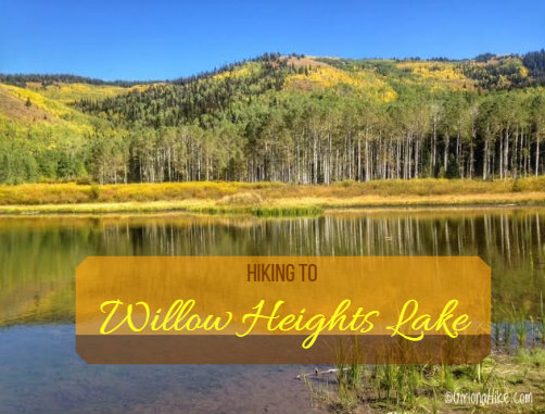 The Best 8 Trails in Salt Lake City For Visitors, Willow Heights Lake