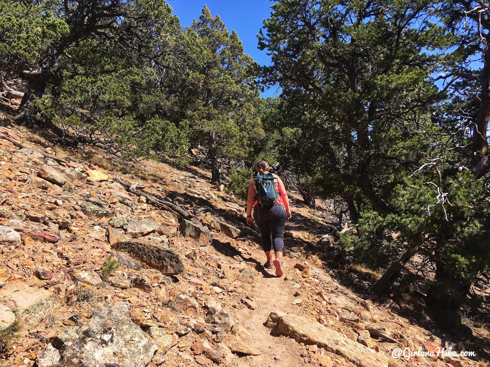 Hiking the North Vista Trail, Black Canyon of the Gunnison National Park