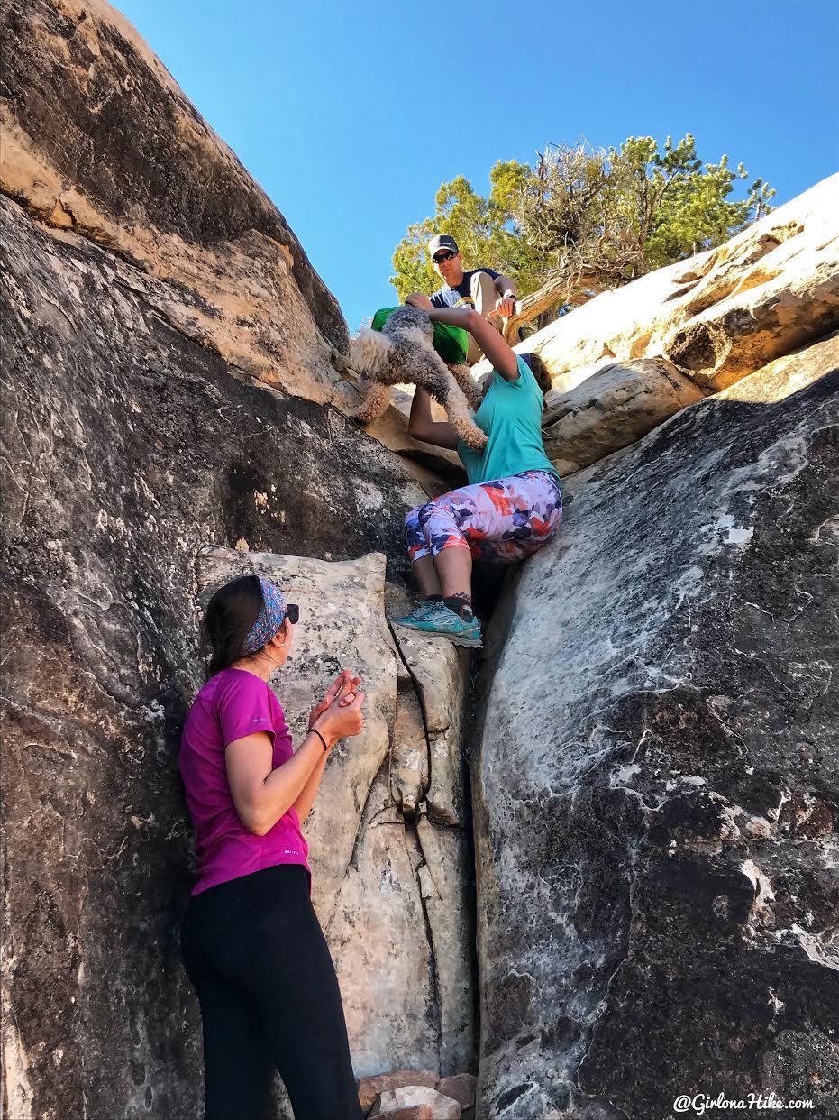 Backpacking Fish & Owl Canyons, Cedar Mesa & Bears Ears National Monument
