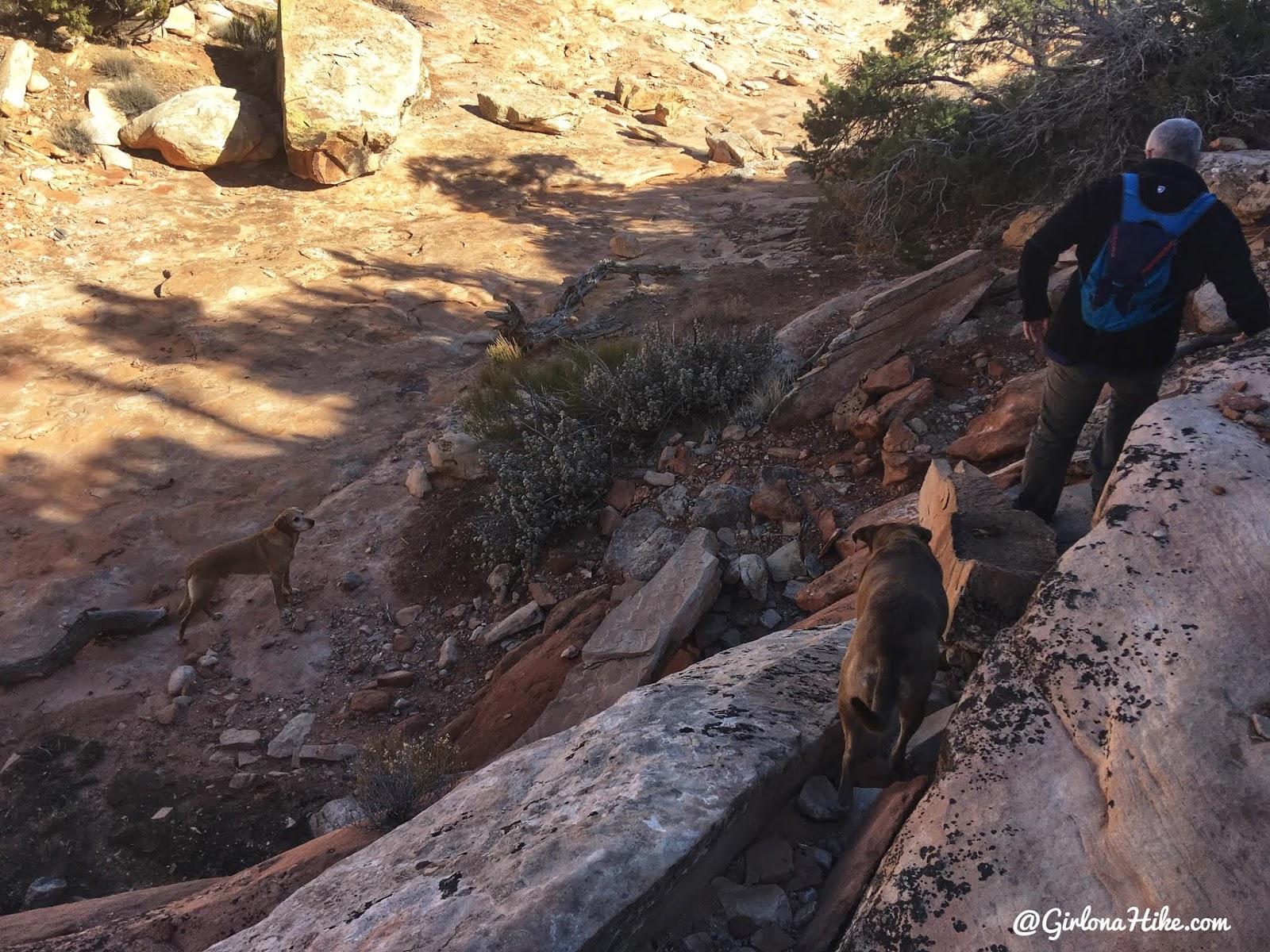 Hiking to the Seven Kivas Ruin via Shortcut Route