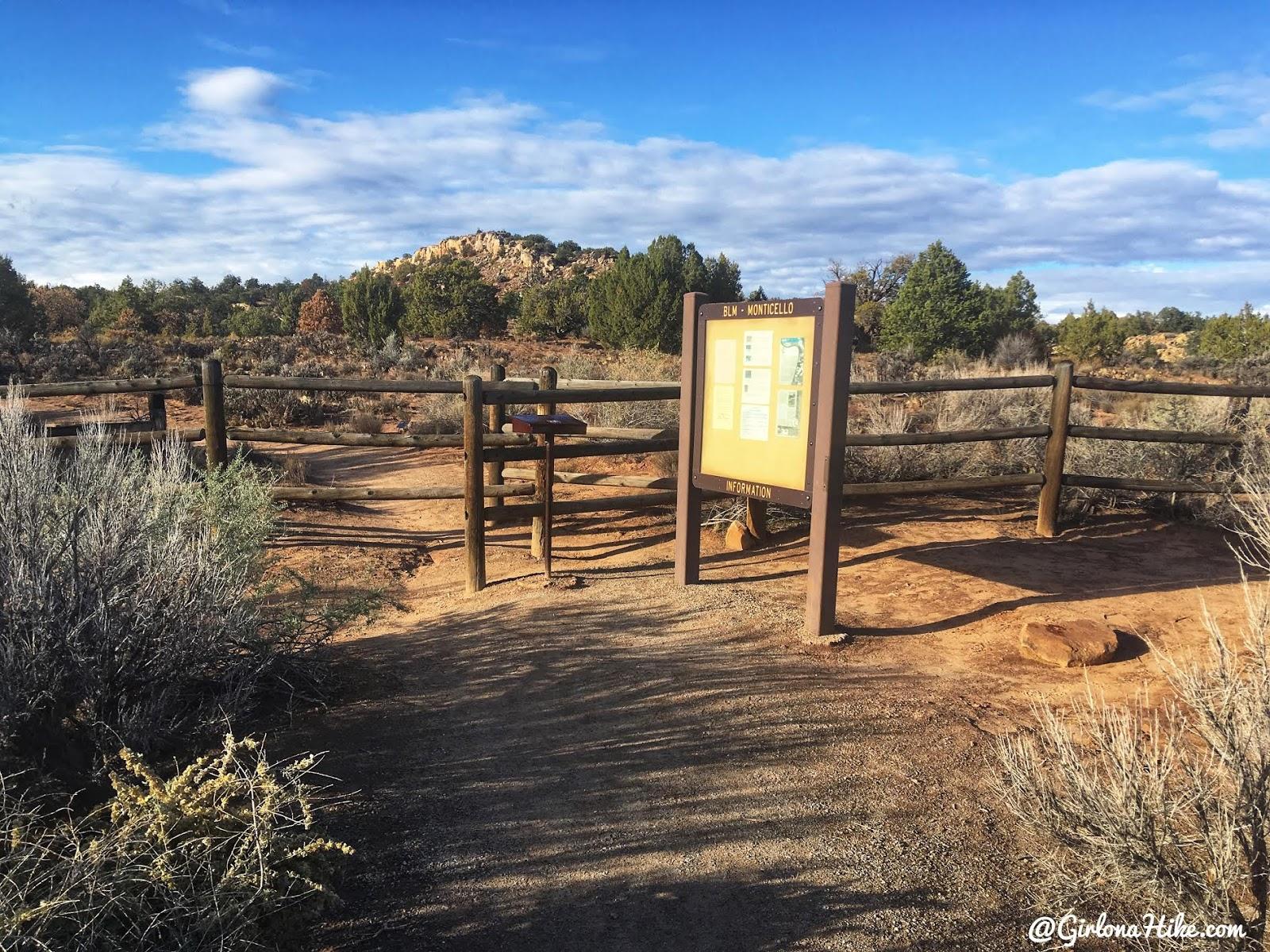 Hiking to the Butler Wash Ruins, Cedar Mesa