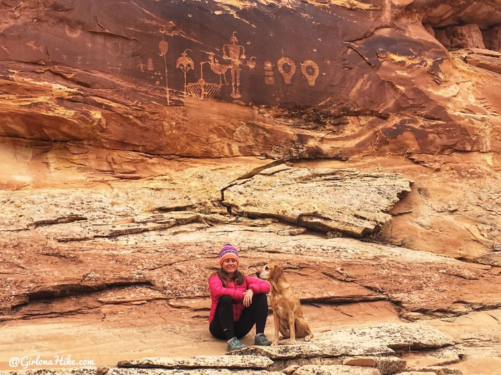 Exploring the Comb Ridge Canyons & Ruins, Cedar Mesa, Butler Wash Ruins, Wolfman Panel