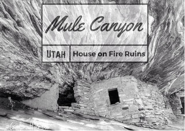 Mule Canyon & House on Fire Ruins