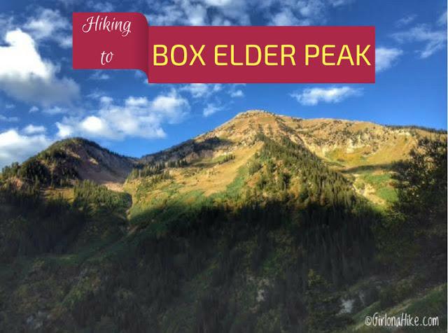 Hiking to Box Elder Peak, American Fork Canyon