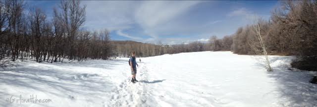 Hiking Squaw Peak, Provo, Rock Canyon Utah, Hiking in Utah with dogs