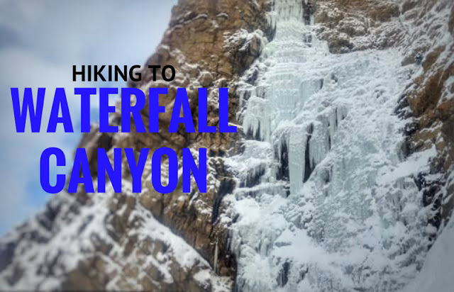 The Best Dog Friendly Waterfalls Hikes in Utah, Waterfall canyon