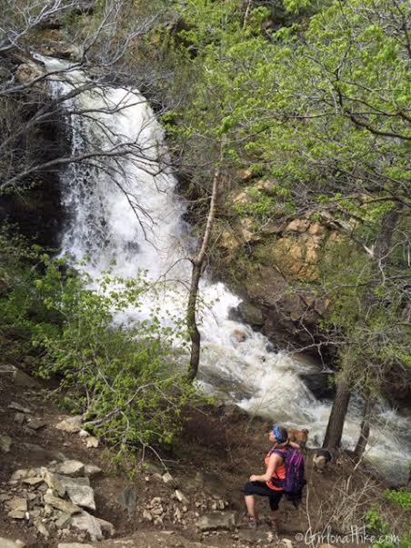 Farmington Canyon Trail, Farmington Canyon Waterfalls, Hiking in Utah with Dogs
