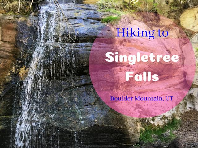 The Best Dog Friendly Waterfalls Hikes in Utah, Singletree Falls Boulder Mountain