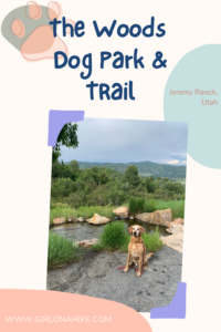 The Woods Trail & Dog Park