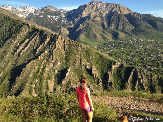 Hiking to Rattlesnake Gulch, Millcreek Canyon, Utah, Hiking with Dogs in Utah