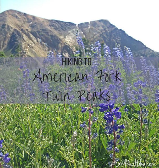 Top 10 Peaks to Bag in Salt Lake City, American Fork Twin Peaks