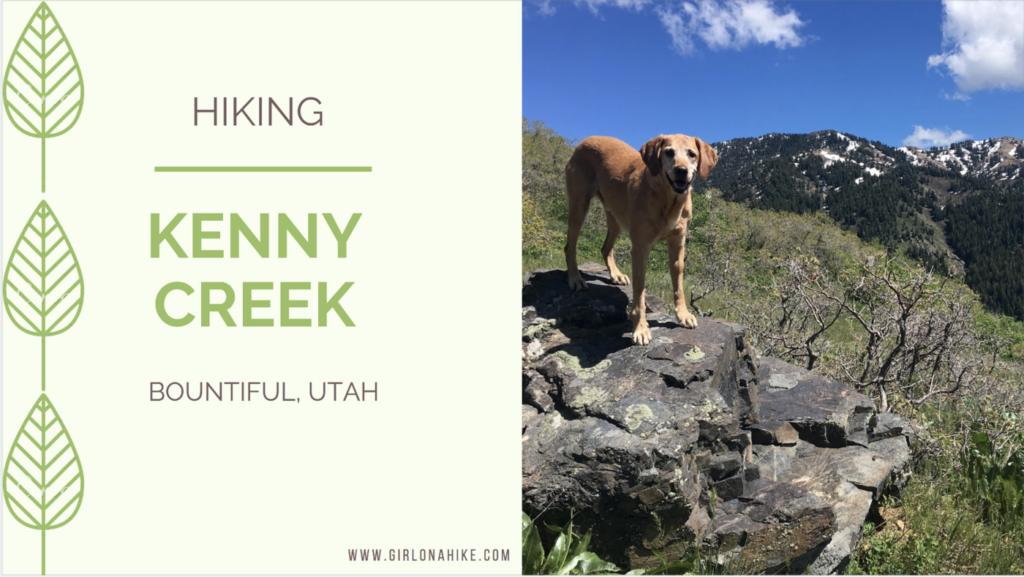 Hike the Kenny Creek Trail