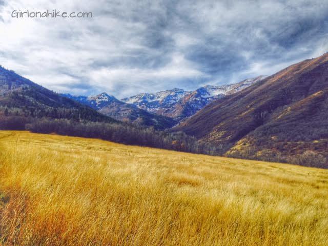 Big Springs trail