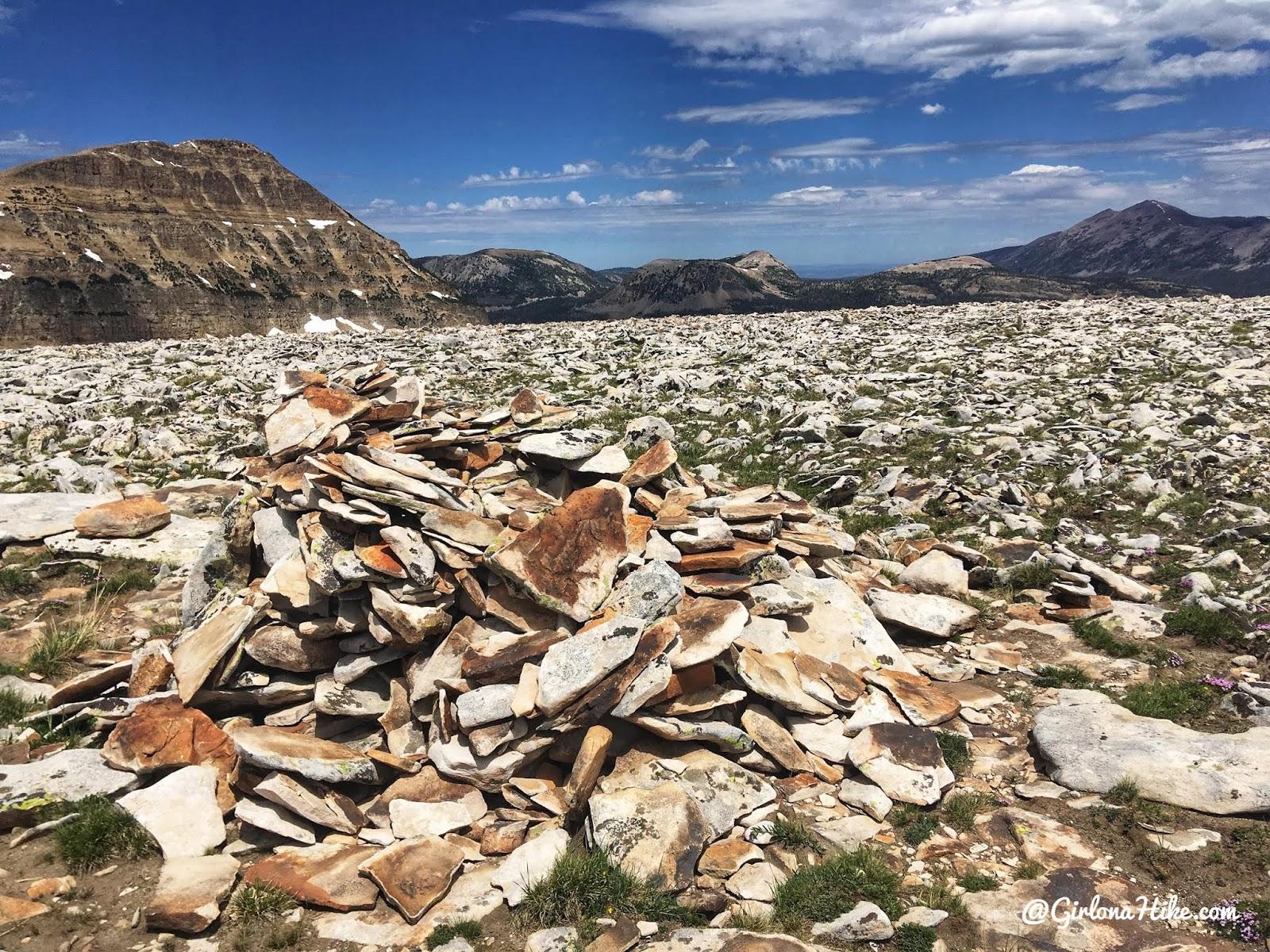 Hiking to Murdock Mountain, Uintas, Day hiking in the Uintas, Uinta peak bagging
