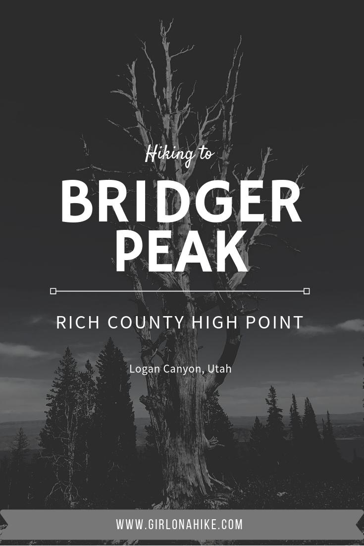 Hiking to Bridger Peak, Rich County High Point