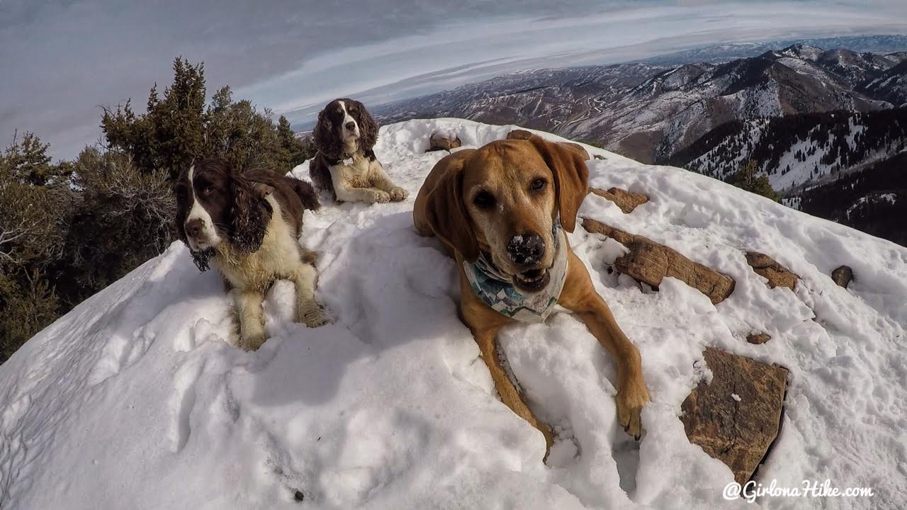 Hiking to Mt. Aire in Winter, Millcreek Canyon