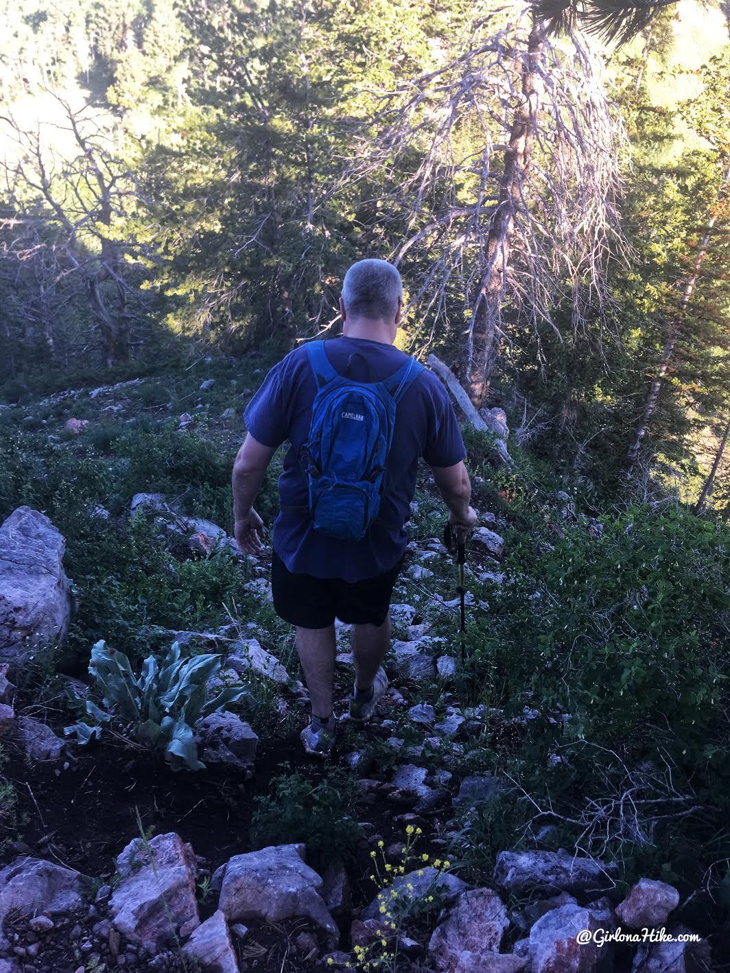 Hiking to Mine Camp Peak, Millard County High Point, Utah county high points