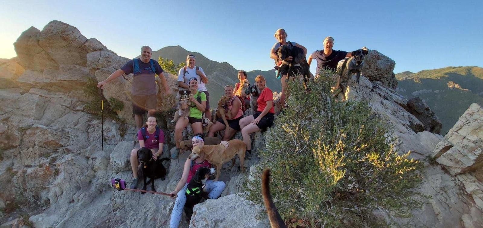 Hiking to Desolation Overlook, Millcreek Canyon, Utah, Hiking in Utah with Dogs, Salt Lake Overlook trail