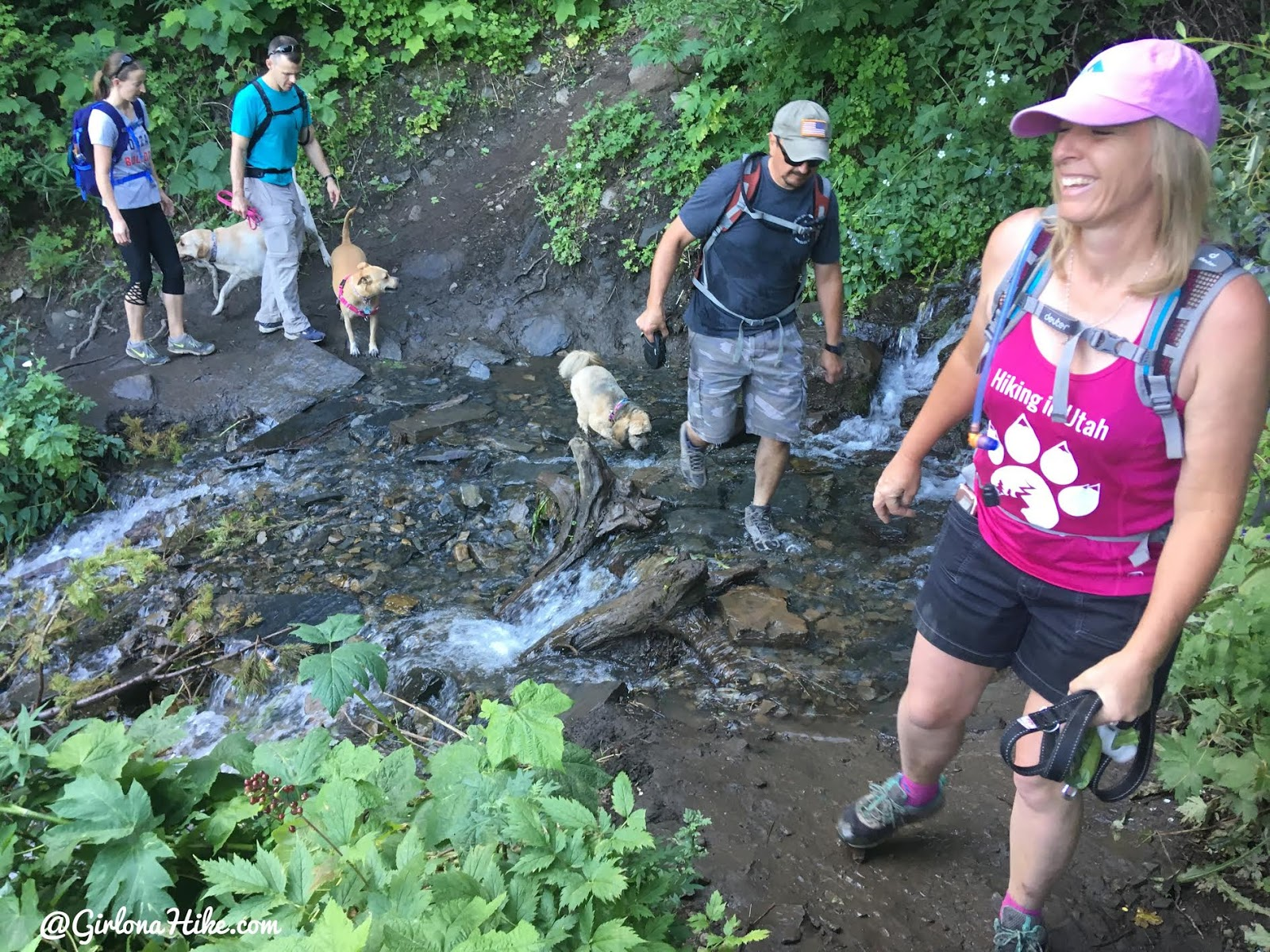Hiking to Scout Falls - In Summer!