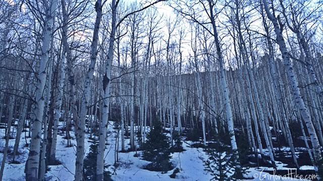 Iron Canyon trail, Park City, Utah