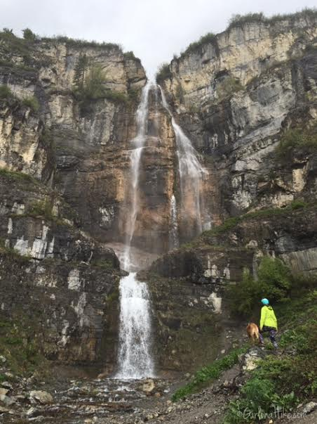 Stewart Falls Hiking Guide, Hiking in utah with dogs