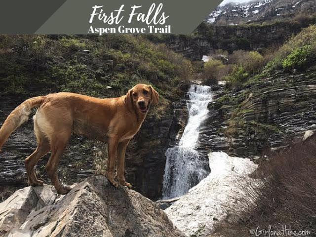 Hiking to First Falls, Aspen Grove Trail
