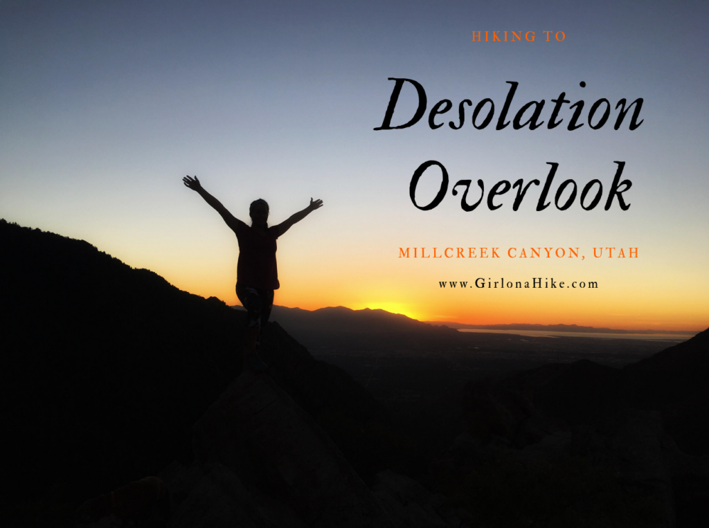 The 7 Best Trails in Millcreek Canyon, Hike to desolation overlook