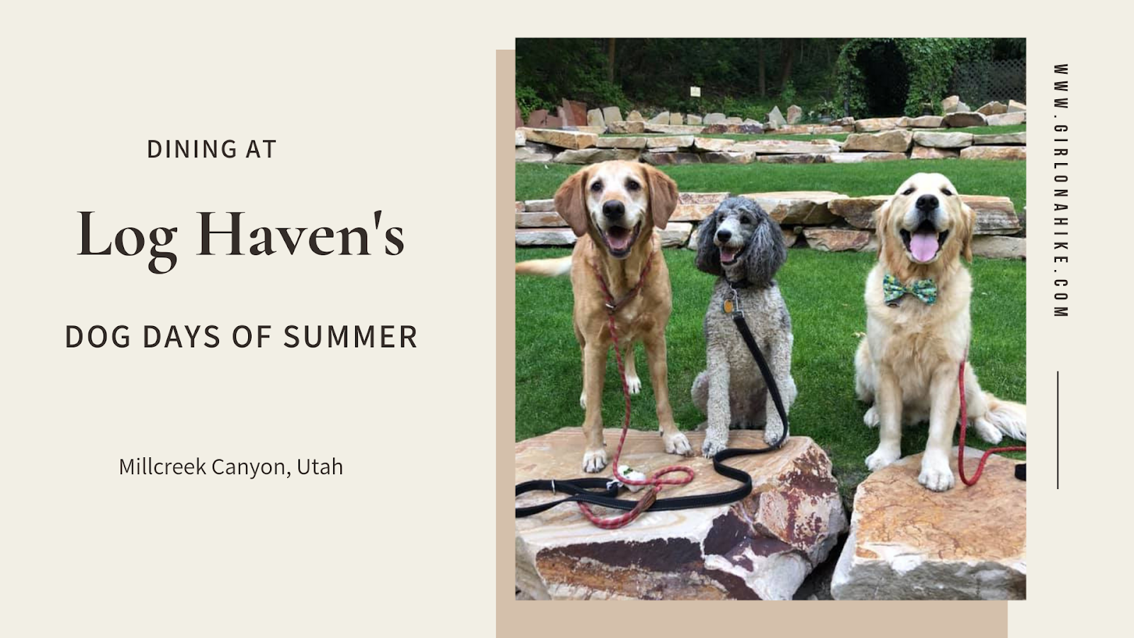 Dining at Log Haven's Dog Days of Summer