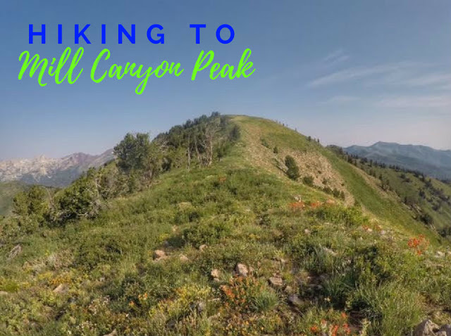 The Top 10 Hikes in American Fork Canyon, American fork canyon best hikes and trails, best views in American fork canyon, Mill Canyon Peak