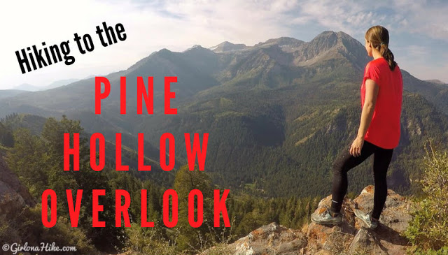 The Top 10 Hikes in American Fork Canyon, American fork canyon best hikes and trails, best views in American fork canyon, Pine Hollow Trail