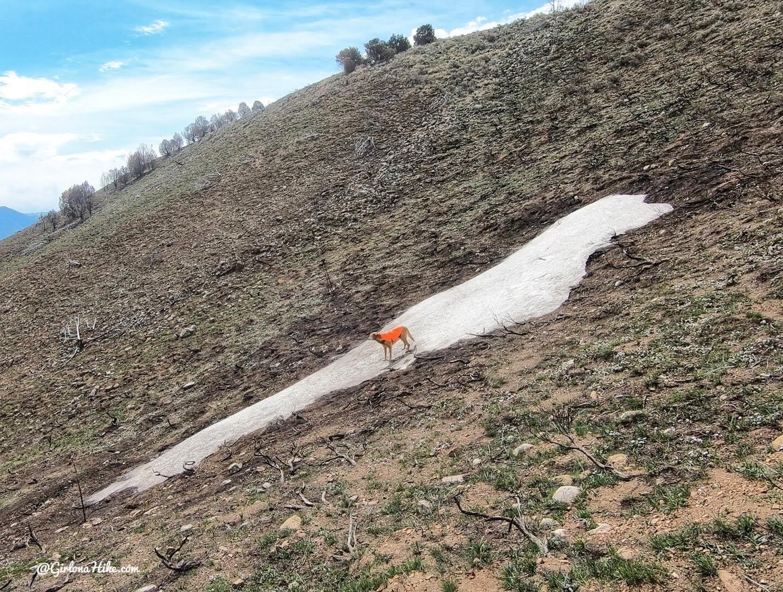 Hiking West Mountain (6,904 ft), Utah
